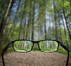 glasses trees preview